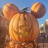 Get Your Mickey Pumpkin Photos