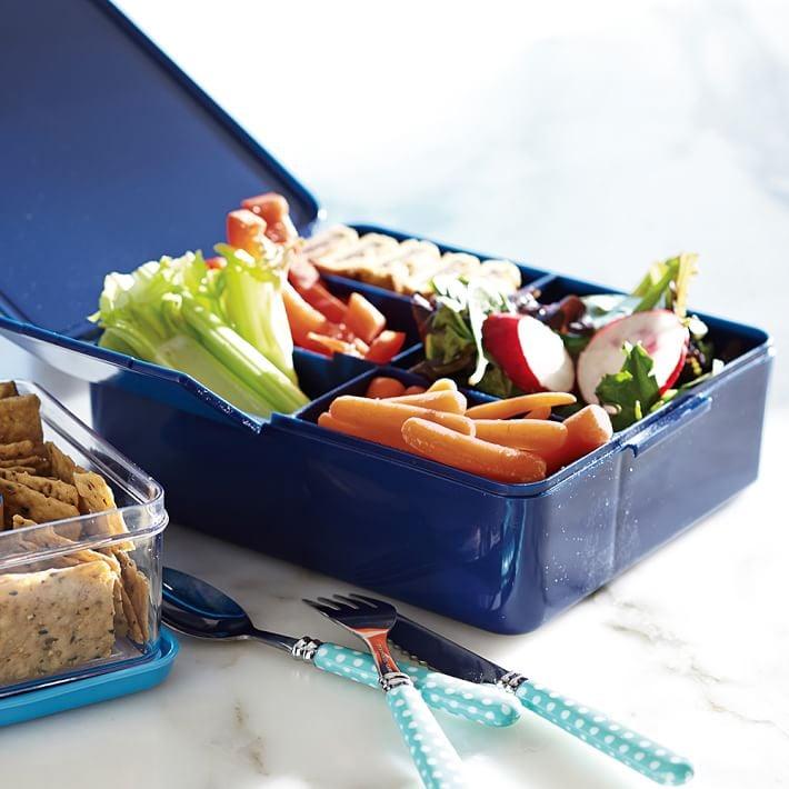 Spencer Bento Box Container