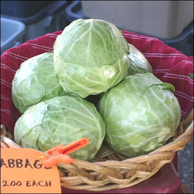 Pick Up a Head of Cabbage
