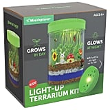 For 6-Year-Olds: Mini Explorer Light-up Terrarium Kit for Kids with LED Light on Lid