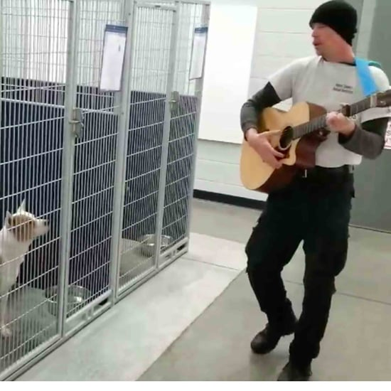 Man Sings to Dogs at Shelter