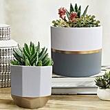 White Ceramic Flower Pot Garden Planters