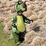 Dinosaur Dress-Up Costume