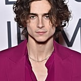 Timothee Chalamet's Raspberry-Coloured Suit on the Red Carpet
