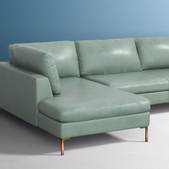 Anthropologie Free Couch Mistake