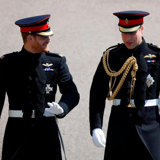 Photos Of Prince William And Prince Harry In Uniform At