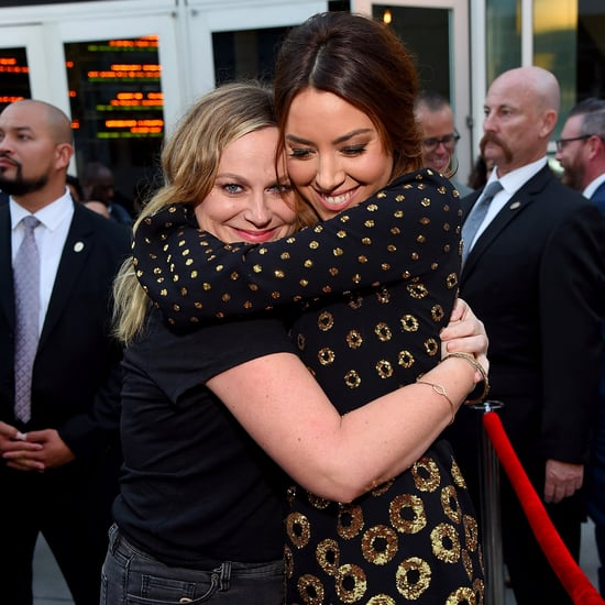 Parks and Recreation Reunion at Ingrid Goes West Premiere