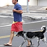 Scott Caan's spotty pup, Dot, joined him on set in Hawaii in April 2011.