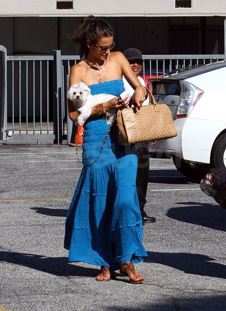 Alessandra Ambrosio with her dog in LA.