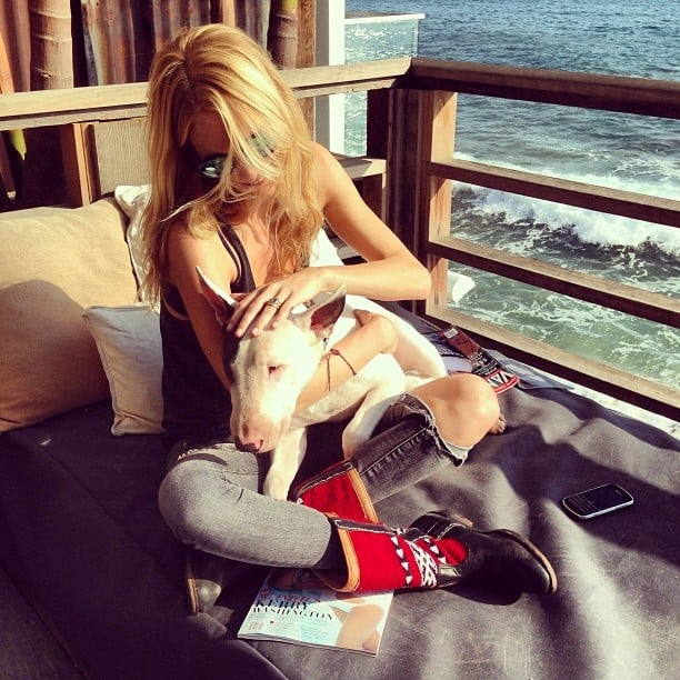 Poppy Delevingne cuddled with a friend's dog by the beach. Source: Instagram user poppydelevingne