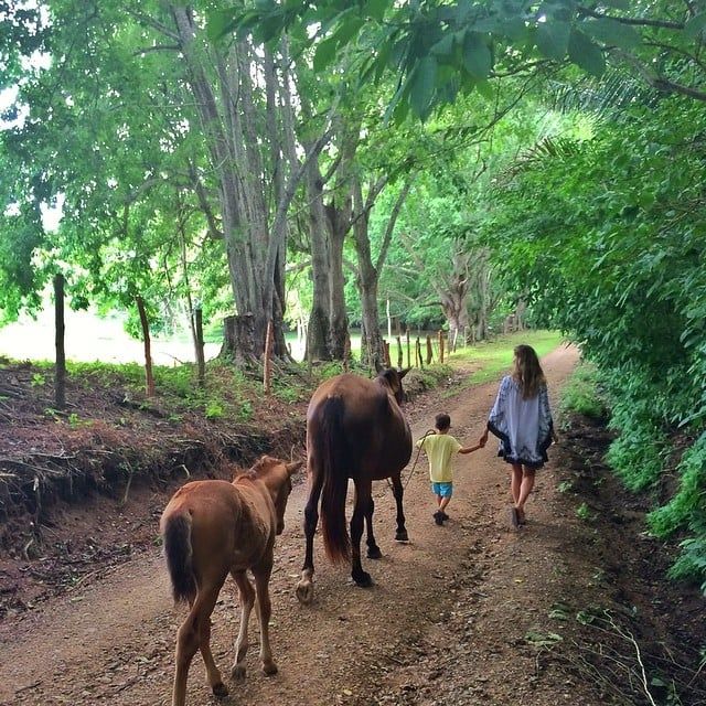 "Gisele spent a day ""having fun with my little guy."" Look at little Benjamin guiding the horses! Source: Instagram user giseleofficial"