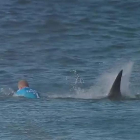 Full Video of Mick Fanning Shark Attack at J-Bay Open
