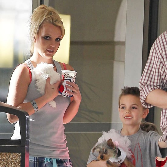 Britney Spears Visits a Vet With Sons Sean and Jayden