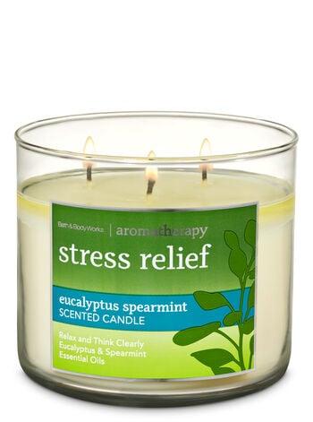Bath & Body Works Eucalyptus Spearmint 3-Wick Candle