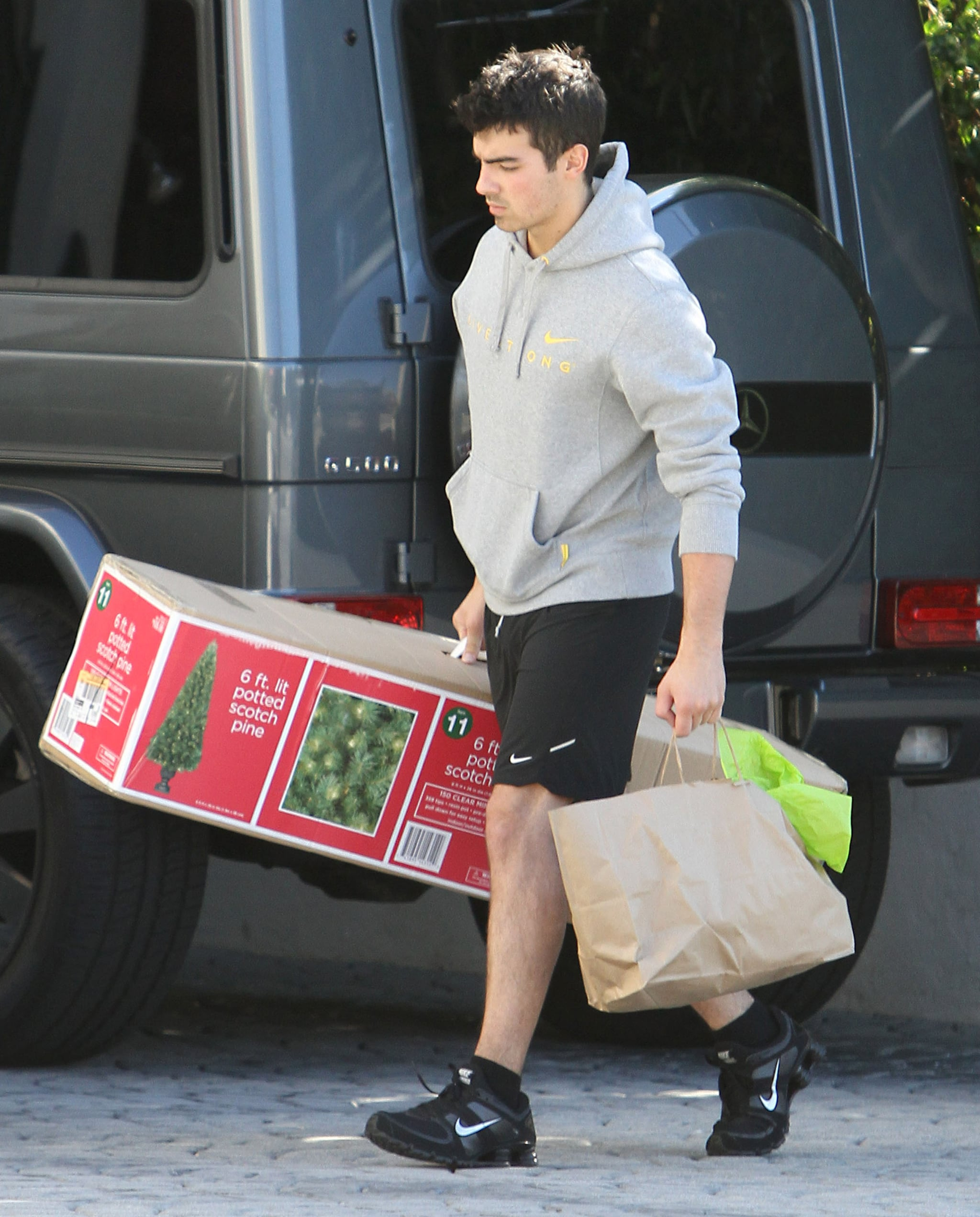 Pictures Of Joe Jonas Carrying A Christmas Tree To Ashley