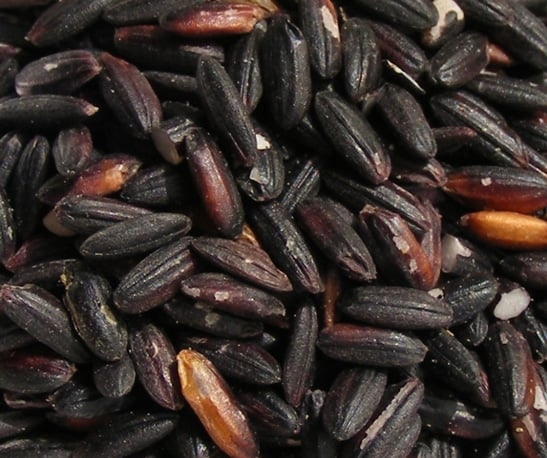 black rice benefits weight loss