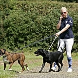 Zara Phillips With Spey the Boxer and Pepper the Black Lab