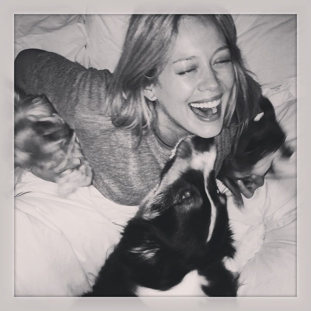 Hilary Duff celebrated National Dog Day with her pooch. Source: Instagram user hilaryduff