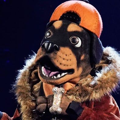 Who Is on the Masked Singer Season 2?