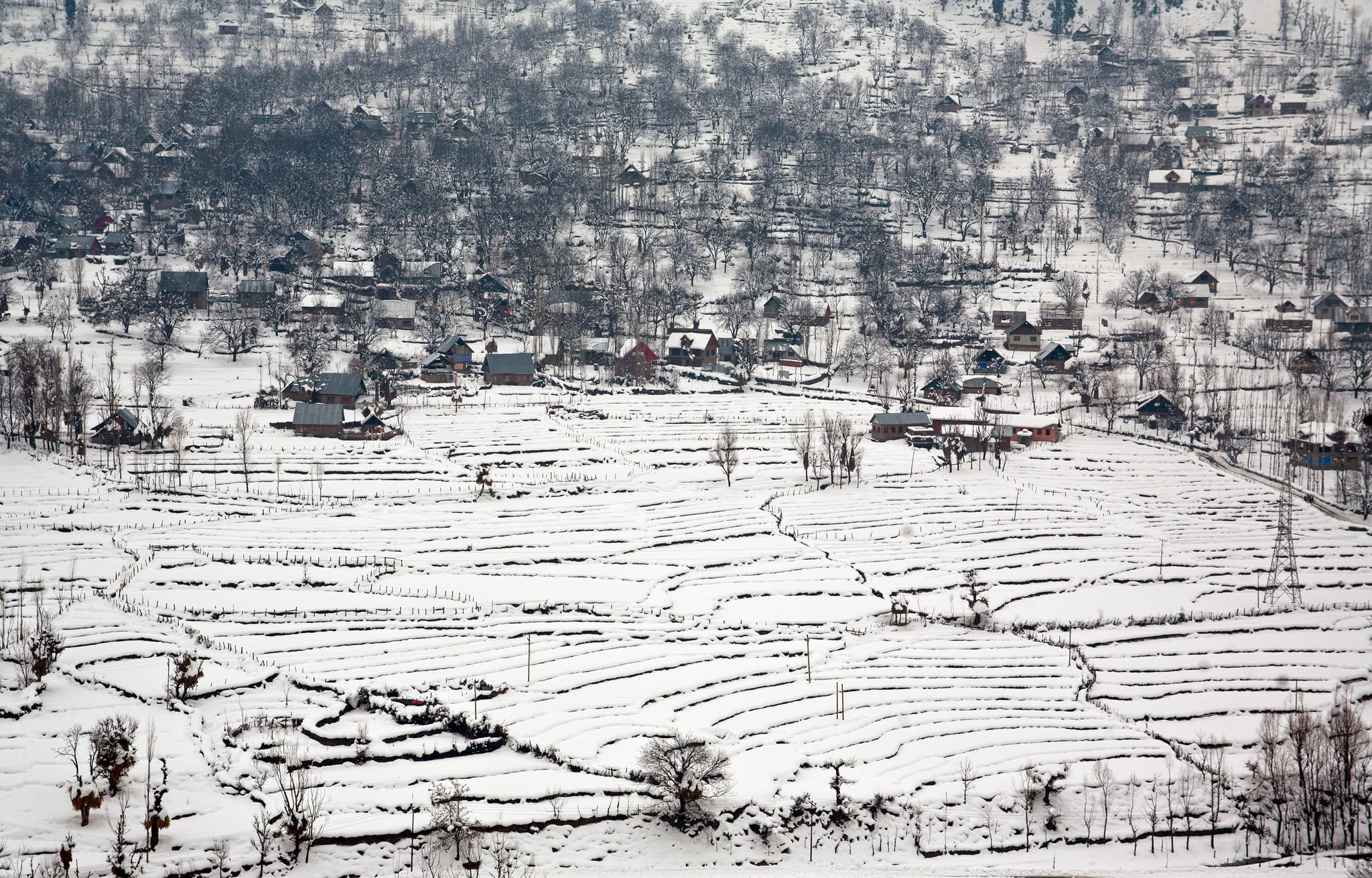 Snow blanketed the houses in Kashmir, India.