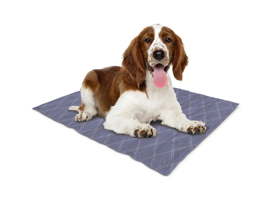 Summer Pet Shopping: Aldi Cooling Mats and Bandanas For Dogs