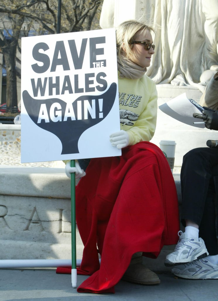 The Scoop: Hayden Wants to Save the Whales Again!