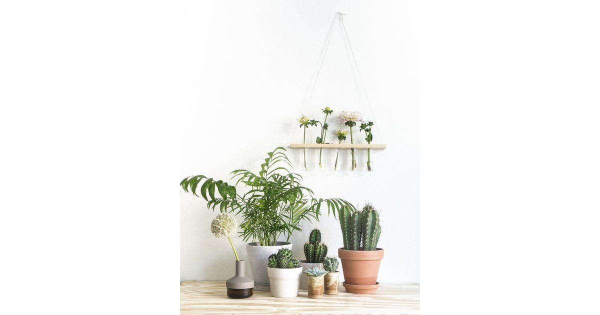 Three Must Read Tips For Achieving A Bohemian Décor In: Thou Shalt Make The Most Of Plants