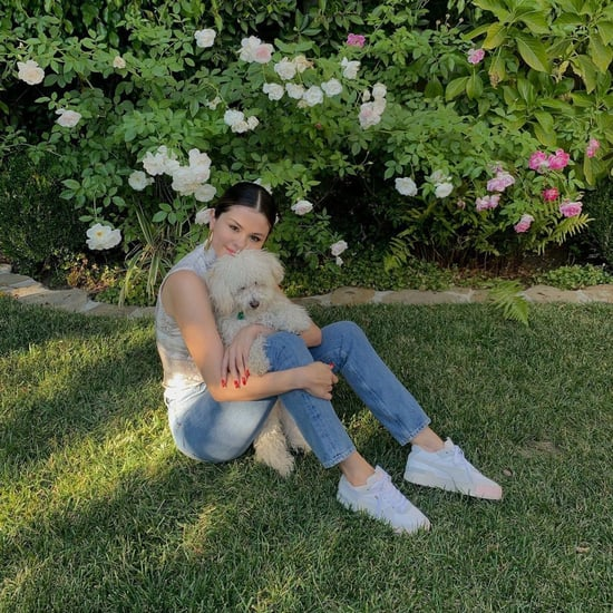 Meet Selena Gomez's Dogs, Daisy and Winnie!