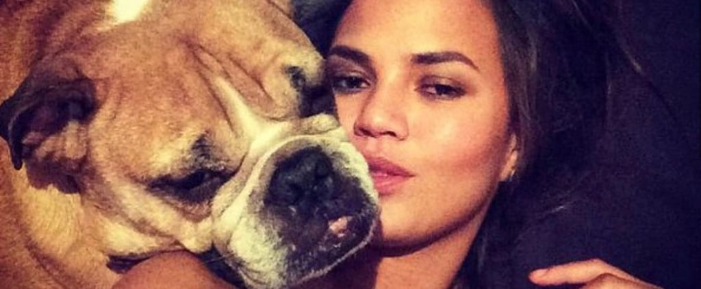 "Chrissy Teigen Mourns the Death of Her Dog Puddy: ""I Will Love You Forever, My Boy"""