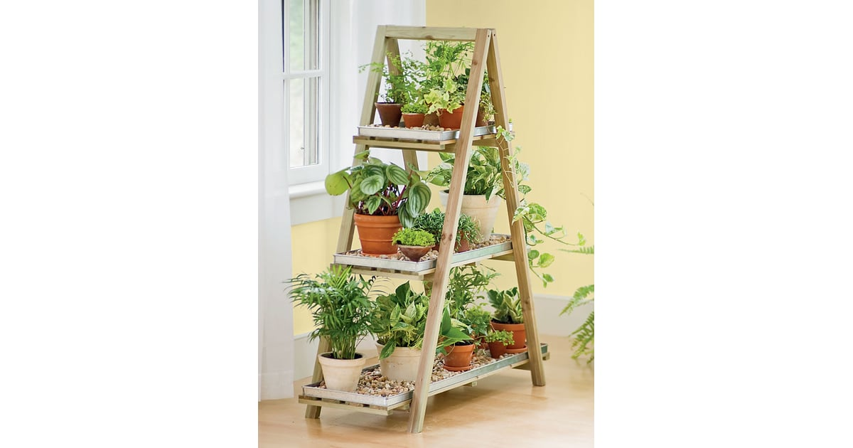 A Frame Plant Stand These Are The Top Trending Gifts On Pinterest For 2019 Popsugar Australia Smart Living Photo 65