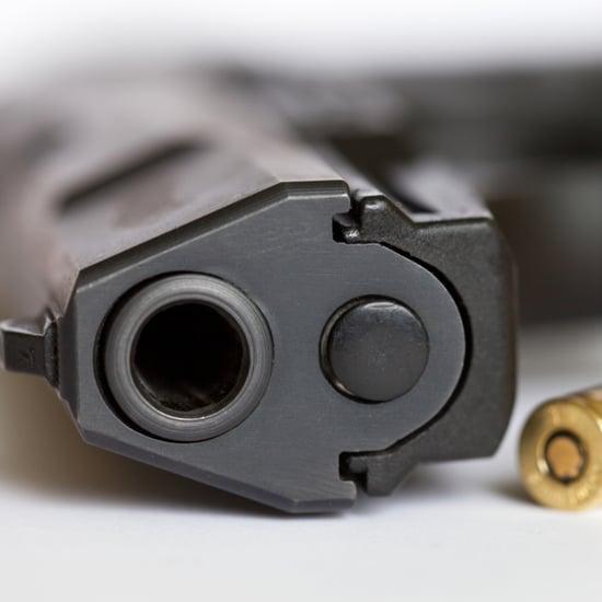 New Georgia Gun Law