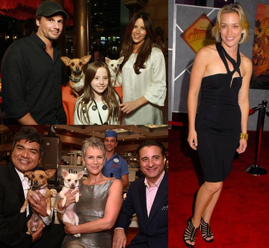 Beverly Hills Chihuahua Hits LA With Its Tail Wagging