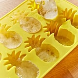 Urban Outfitters Pineapple Ice Tray