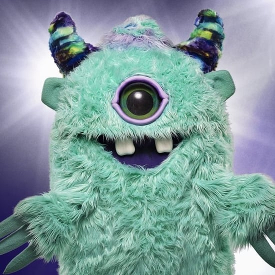Who Is on the Masked Singer?