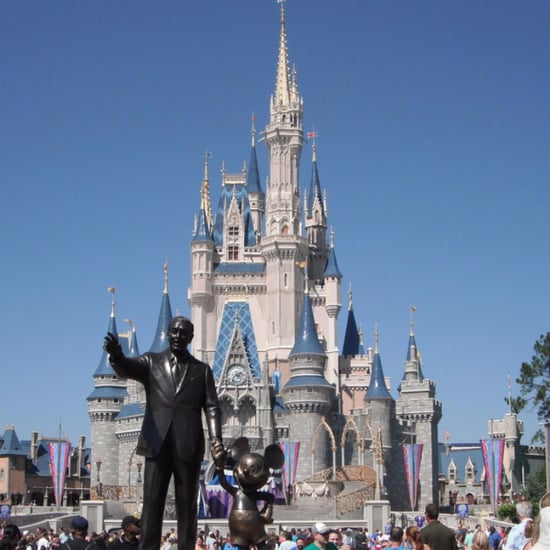 Walt Disney World Attractions by Age