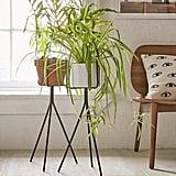 Tripod Plant Stand ($29)