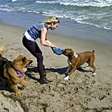 Chelsea Handler brought her dogs, Chunk and Gary, to the beach in LA in August 2012. Source: Twitter user chelseahandler