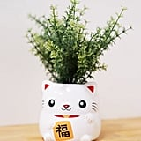Smoko Cat Planter