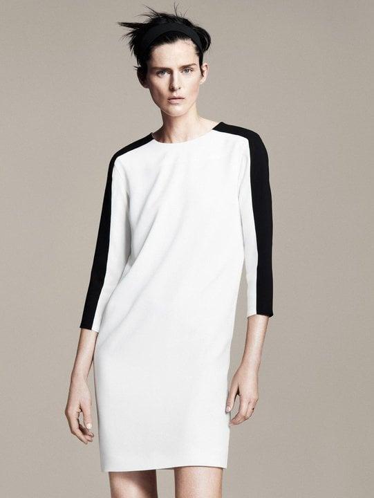 Photos of Zara Spring 2011 Collection Lookbook Featuring Stella Tennant