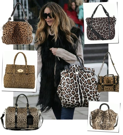 Photo of Elle Macpherson with Leopard Print Handbag