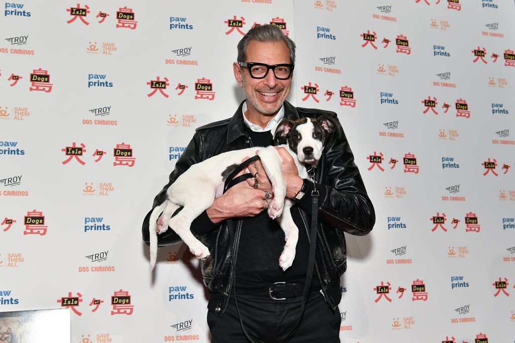 Best Jeff Goldblum Moments 2018