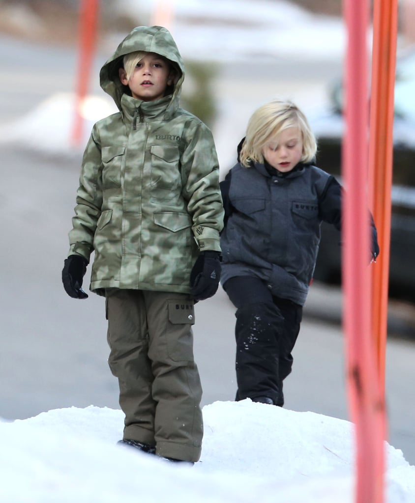 Kingston and Zuma trekked in the snow.