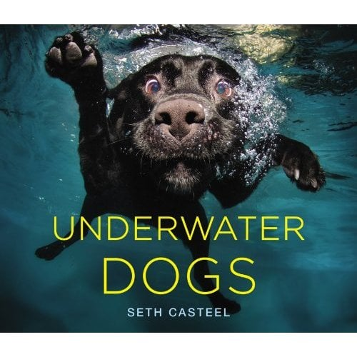 We can't wait for Seth Casteel's Underwater Dogs book ($20) debuting on Oct. 23. The pet portraitist's amazing photos of canine swimmers taken from under the water's surface went viral earlier this year, and now these images have leaped from screen to page in a glossy, 144-page volume.
