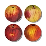 John Derian Apple-Print Melamine Salad Plate Set