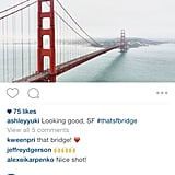 Landscape and Portrait Format on Instagram