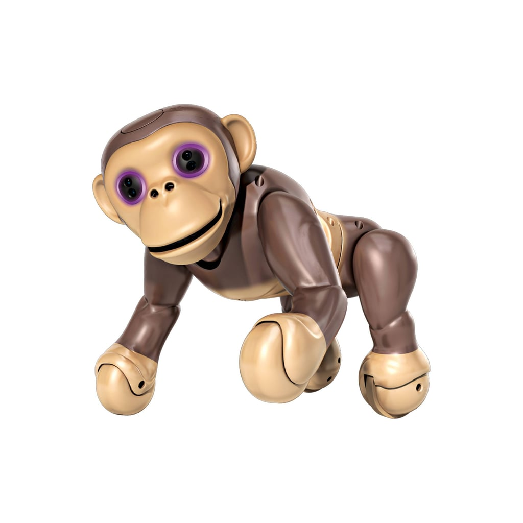 For 5-Year-Olds: Zoomer Chimp