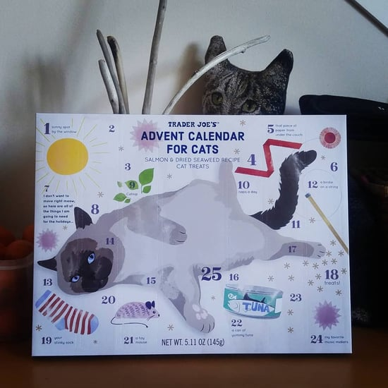 Trader Joe's Advent Calendars For Cats 2019