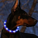 USB Rechargeable Glowing Pet Safety Collar