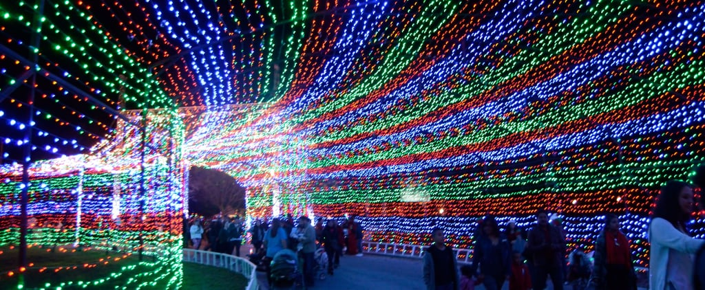 The 10 Most Spectacular Holiday Light Displays Across America