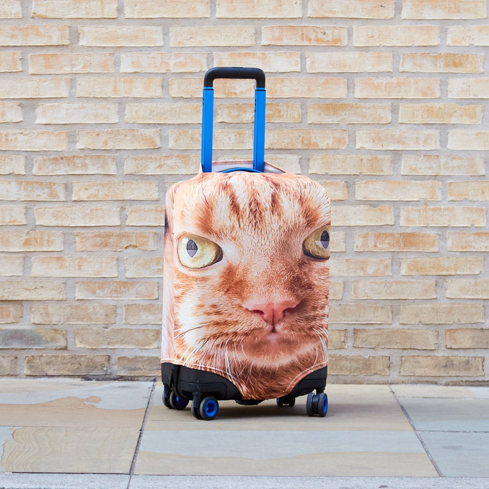 This Company Puts Your Pet's Face Onto Your Suitcase and OMG, My Dog Is Going to Hate When I Travel Now